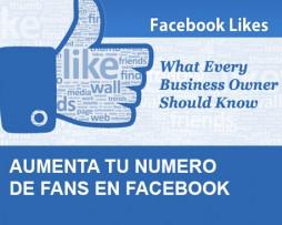servicio-facebook-1
